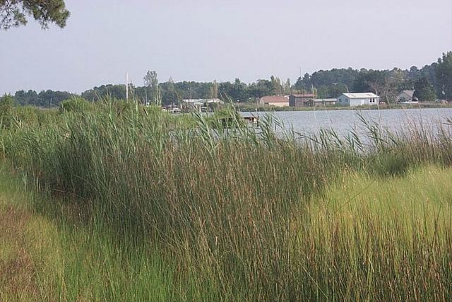 St. George Island
