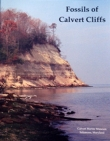 Fossils of Calvert Cliffs